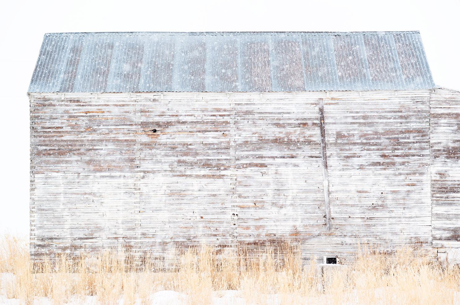 web_FINAL_Flattened_L1003821_White_Barn_VI-copy